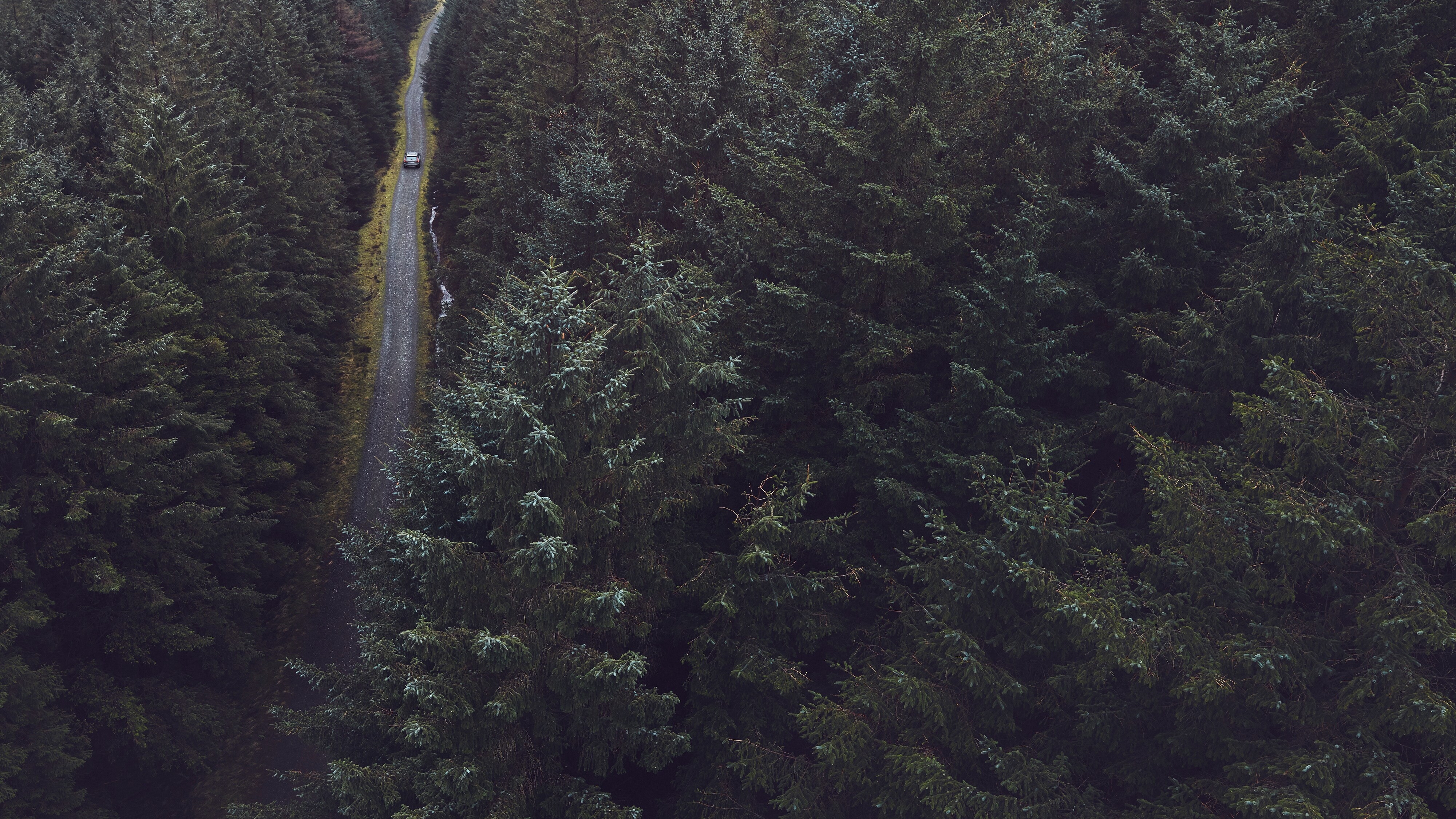Aerial view of Volvo V90 Cross Country driving through a Scandinavian forest
